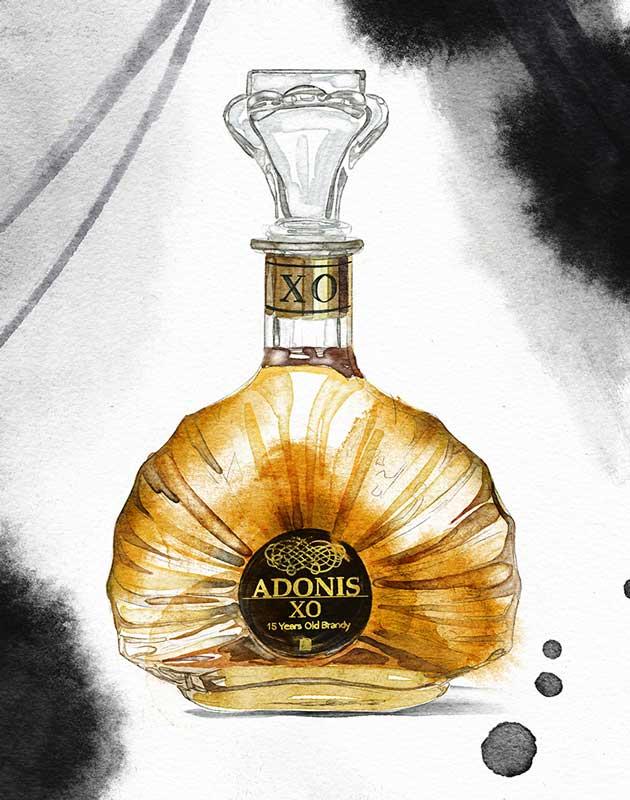 Adonis_lr